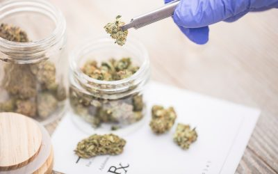New York Greenlights Medical Marijuana to Replace Opioid Prescriptions